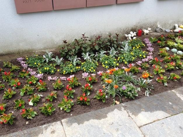 Ott gartenbau ag bildergalerie - Herbstbepflanzung garten ...